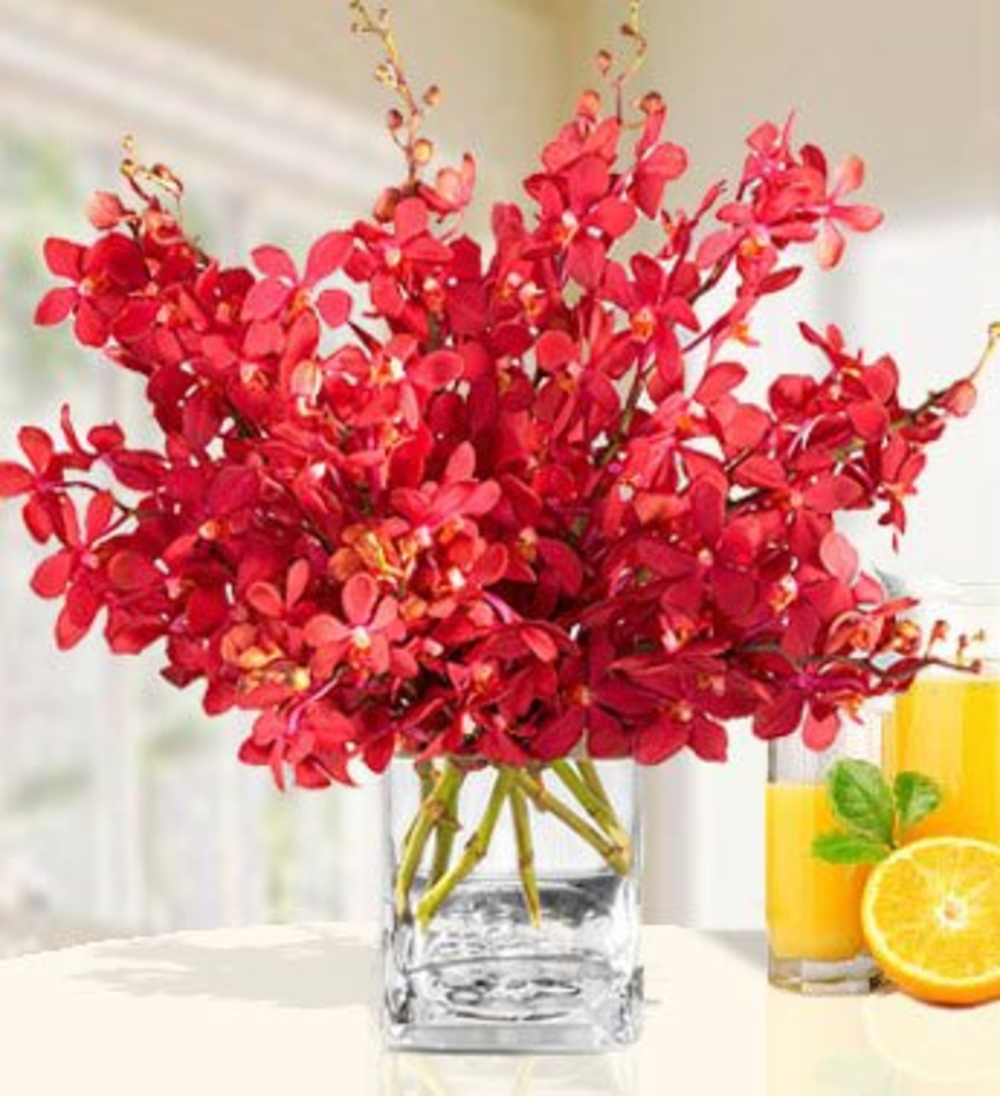 Vase with 20 Red Orchids